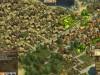 anno-online-gameplay-screenshots (3)