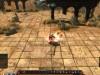 eligium-review-screenshots (3) copy